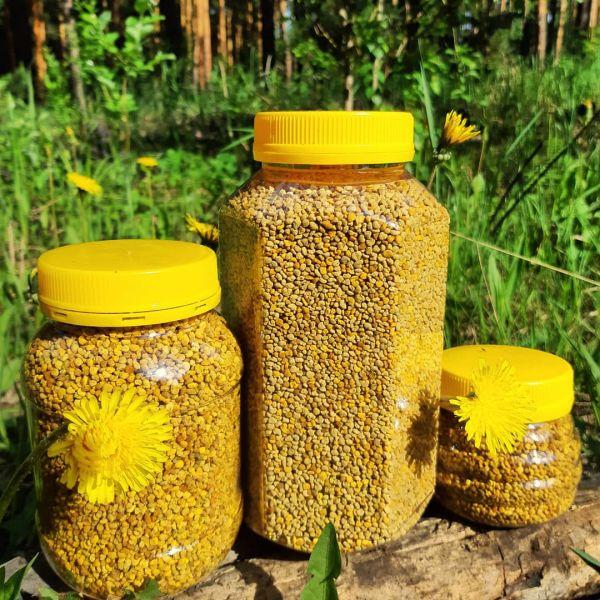 Пчелиная пыльца (сбор 2021)